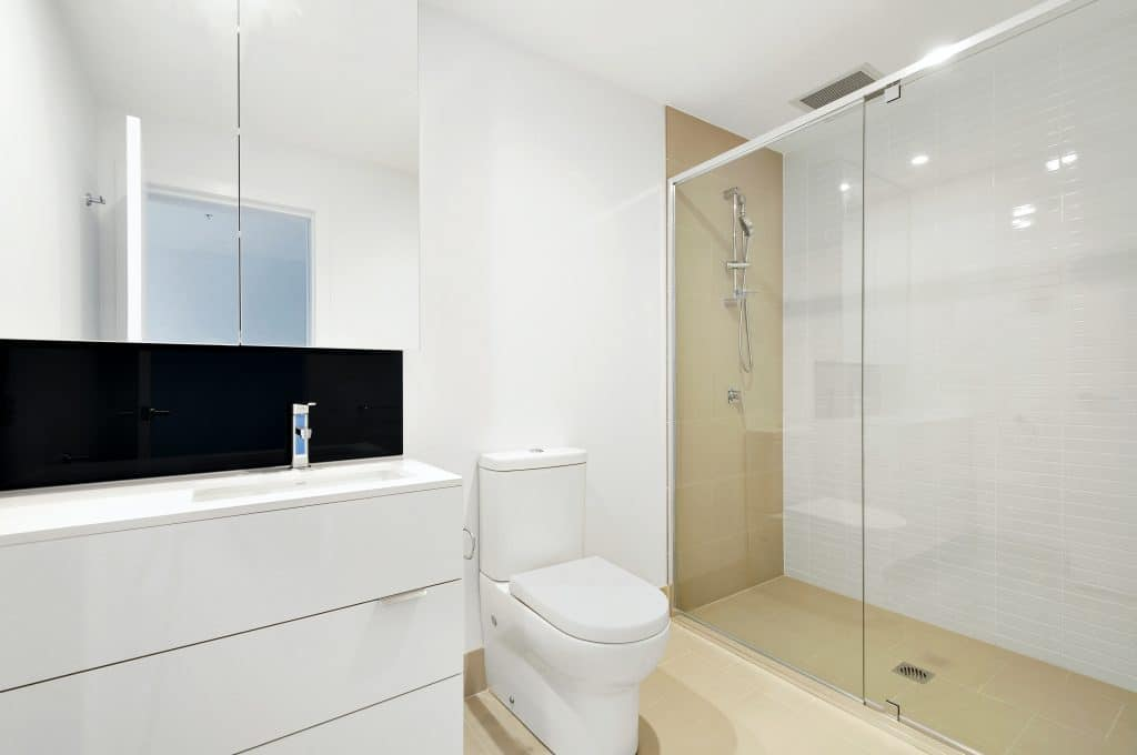 White toilet with shower
